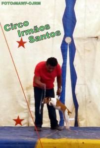 circo irmaos santos 11 - 20161213_105014 (431x640)